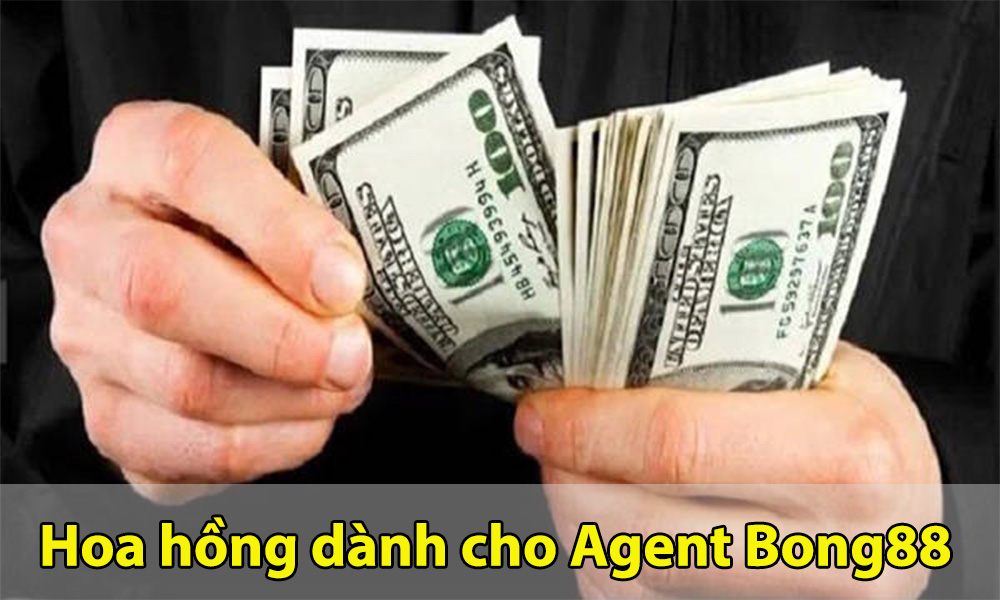 Thông tin bảng hoa hồng Agent Bong88