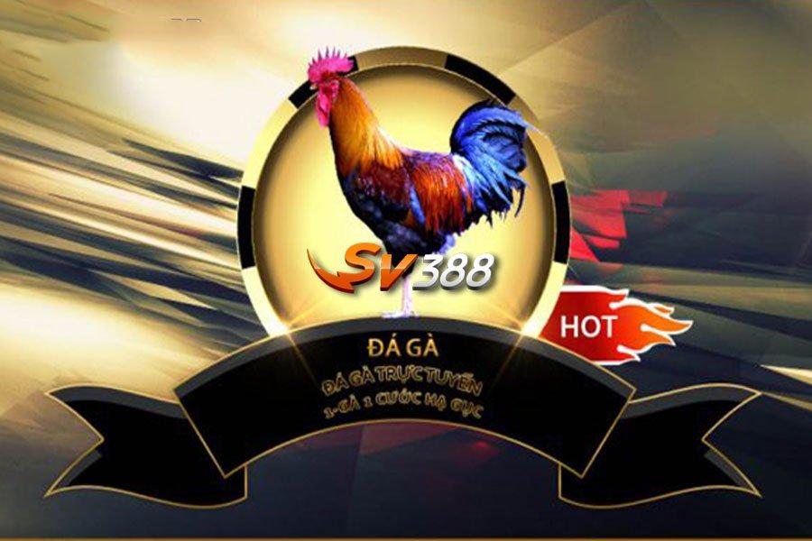Trang mạng đá gà trực tuyến SV388